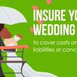 village insurance event insurance infographic