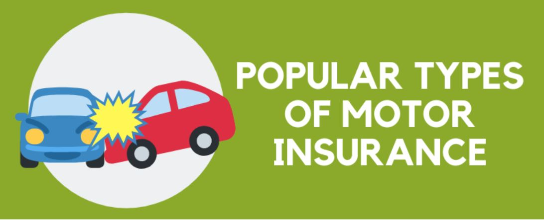 Infographic: Popular Types of Motor Insurance