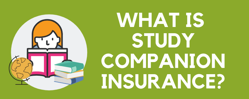 Infographic: What is Study Companion Insurance?